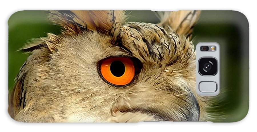 Wildlife Galaxy Case featuring the photograph Eagle Owl by Jacky Gerritsen