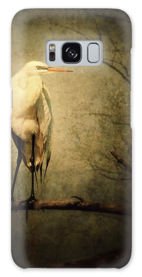 Great Egret Galaxy S8 Case featuring the photograph Egret And Eagle by Al Mueller