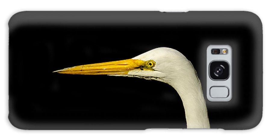 Wildlife Galaxy S8 Case featuring the photograph Egret On Black by Robert Frederick