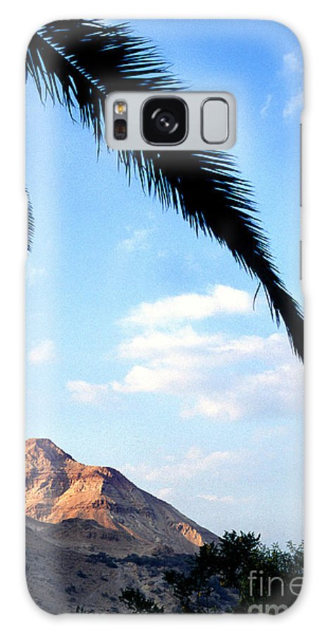 Ein Gedi Galaxy S8 Case featuring the photograph Ein Gedi Oasis In The Judean Desert by Thomas R Fletcher