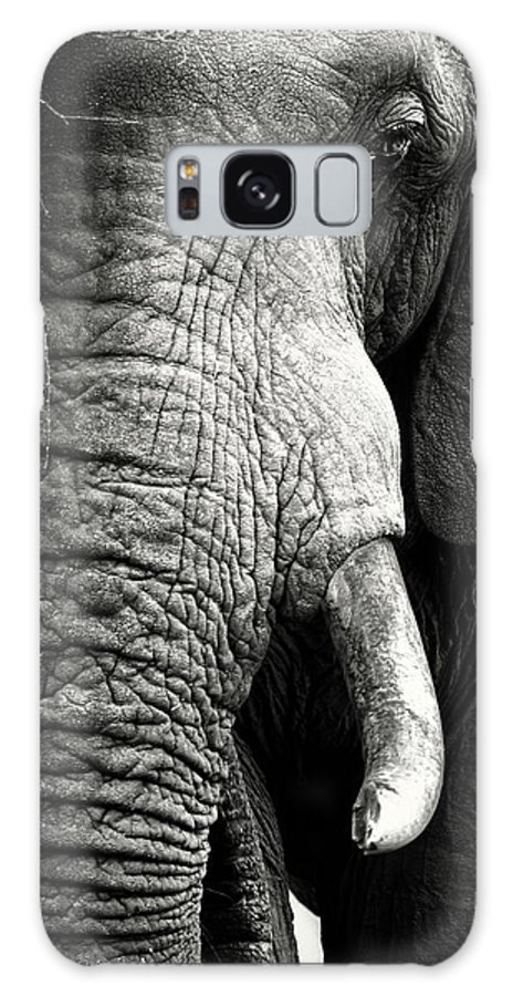 Elephant Galaxy Case featuring the photograph Elephant Close-up Portrait by Johan Swanepoel