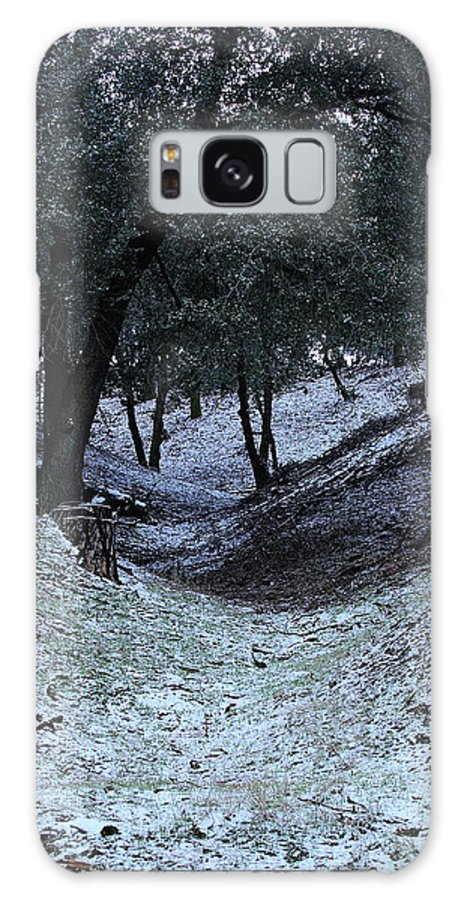 California Galaxy S8 Case featuring the photograph Elevation 4500 Ft And Up by Viktor Savchenko