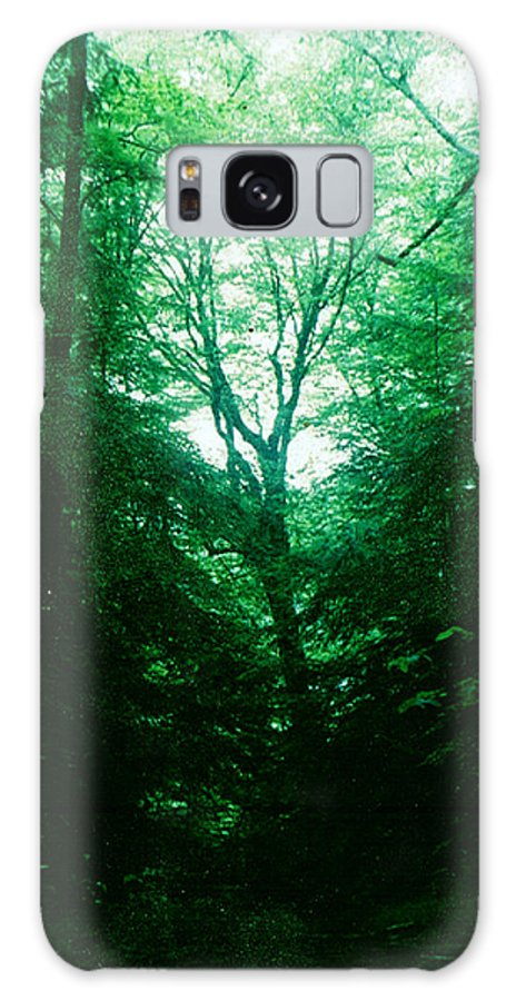 Emerald Galaxy S8 Case featuring the photograph Emerald Glade by Seth Weaver