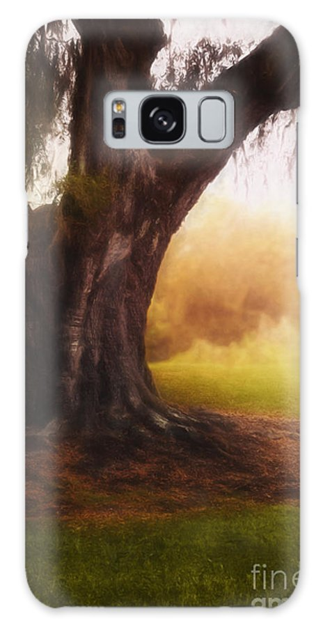 Tree Galaxy S8 Case featuring the photograph Enchanted by Margie Hurwich