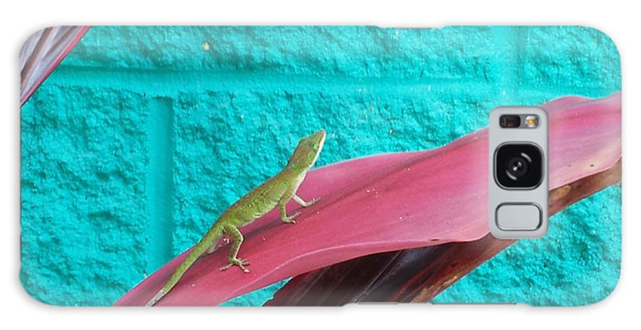 Anole Galaxy S8 Case featuring the photograph Encounter by Sandra Carter