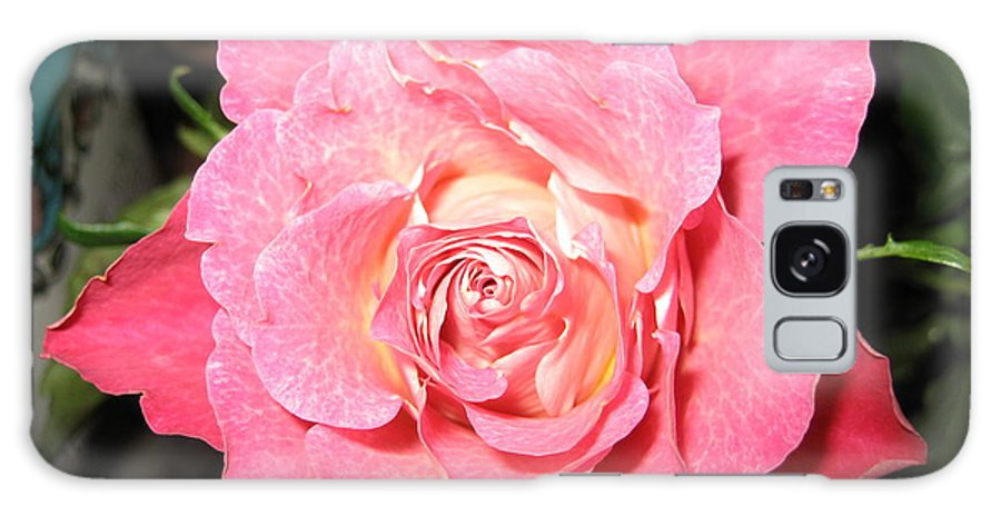 Rose Galaxy Case featuring the photograph English Rose by Paolo Marini
