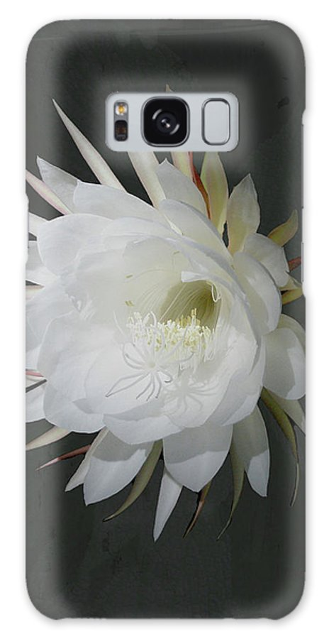 Flower Galaxy S8 Case featuring the photograph Epiphyte Blossom - Epiphyllum Oxypetalum by Mother Nature