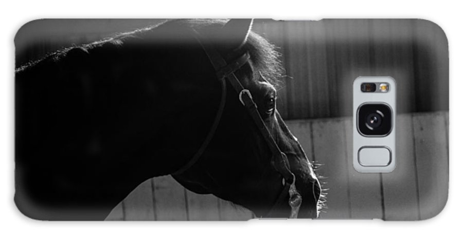 Horse Galaxy S8 Case featuring the photograph Equine Smile by Monte Arnold