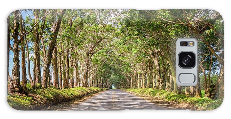 Tree Tunnel Kauai Hawaii Galaxy Case featuring the photograph Eucalyptus Tree Tunnel - Kauai Hawaii by Brian Harig