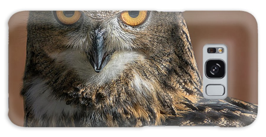 Animal Galaxy S8 Case featuring the photograph Eurasian Eagle Owl Iv by Abeselom Zerit