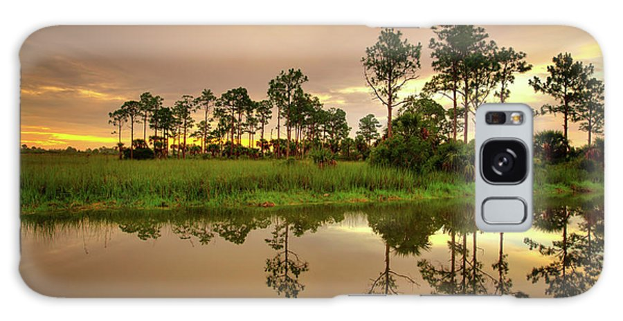 Landscapes Galaxy S8 Case featuring the photograph Everglades Sunrise by Dennis Goodman