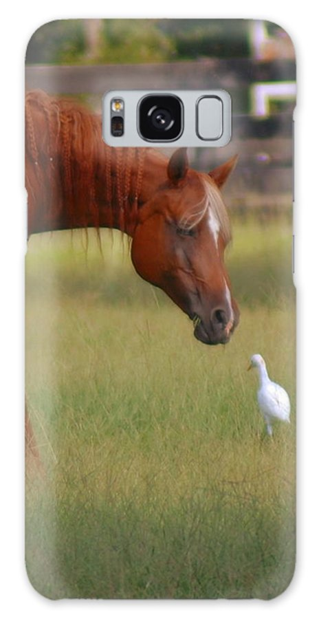 Horse Galaxy S8 Case featuring the photograph Excuse Me by Donna Bentley