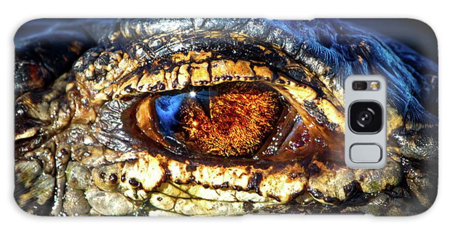 Alligator Galaxy S8 Case featuring the photograph Eye Of The Apex by Mark Andrew Thomas
