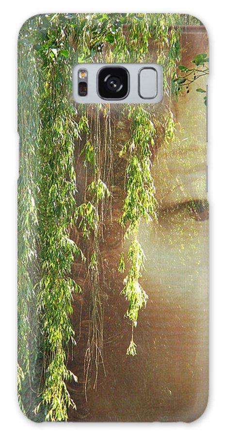 Face Galaxy S8 Case featuring the photograph Face In The Willows by Greg Matchick