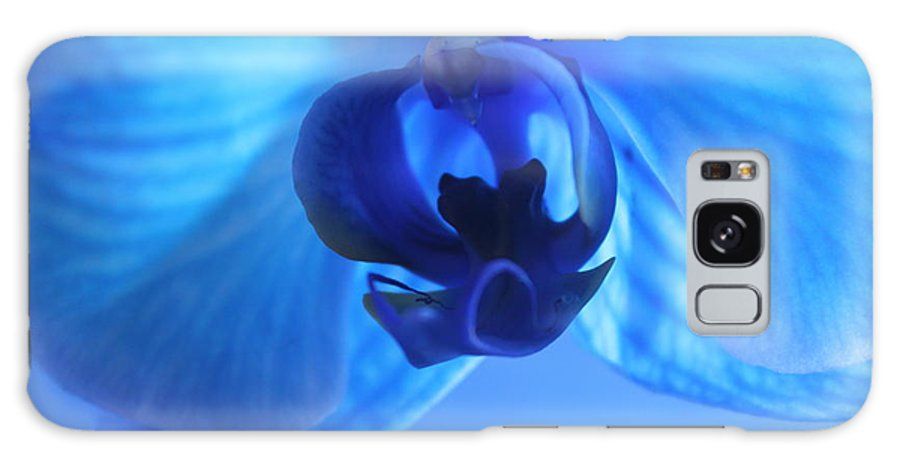 Orchid Galaxy S8 Case featuring the photograph Faithfully Blue by Krissy Katsimbras