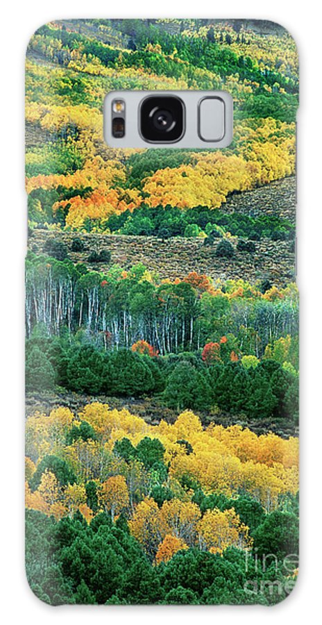 Dave Welling Galaxy S8 Case featuring the photograph Fall Color In The Eastern Sierras California by Dave Welling