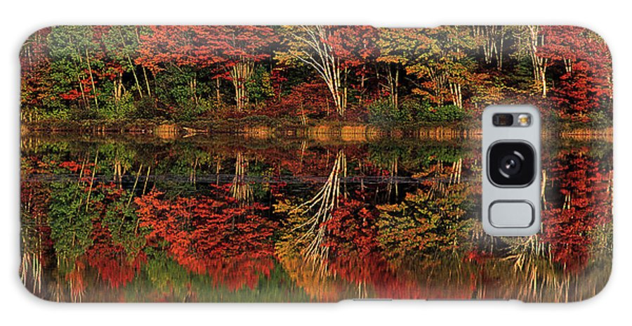 Dave Welling Galaxy S8 Case featuring the photograph Fall Color Reflected In Thornton Lake Michigan by Dave Welling