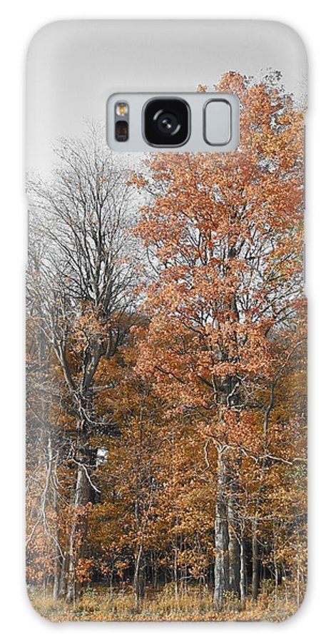 Landscape Galaxy Case featuring the photograph Fall Colors by Dylan Punke