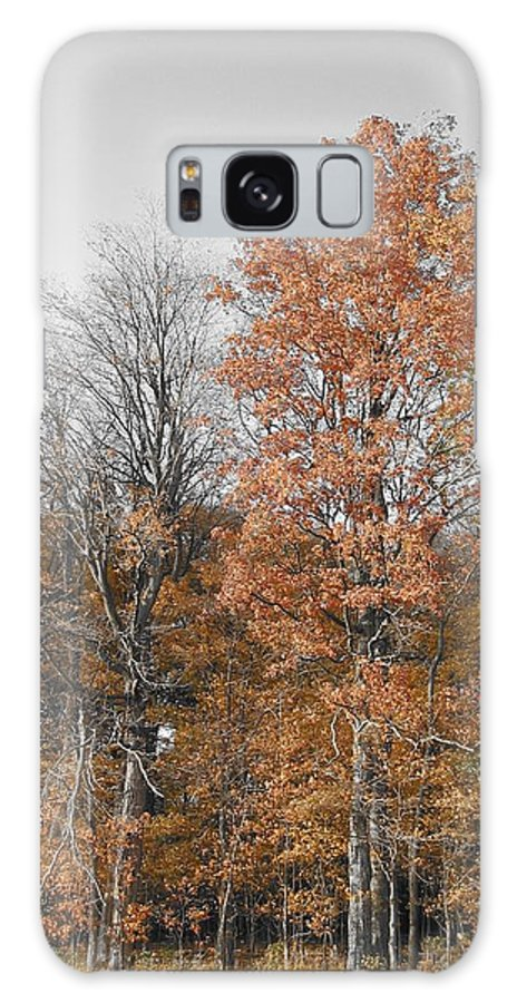 Landscape Galaxy S8 Case featuring the photograph Fall Colors by Dylan Punke