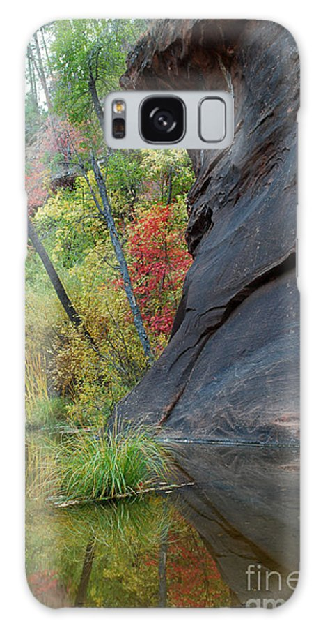 Landscape Galaxy S8 Case featuring the photograph Fall Colors Peek Around Mountain Vertical by Heather Kirk