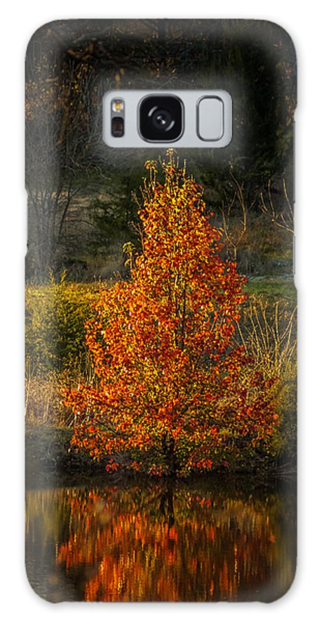 Landscape Galaxy S8 Case featuring the photograph Fall Colors by Sunshine Nelson