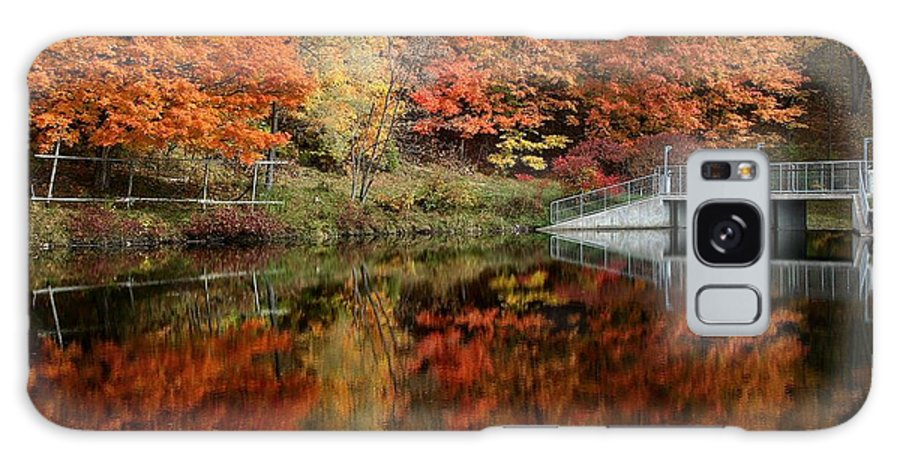 'water Galaxy S8 Case featuring the photograph Fall Colour by David Hubbs