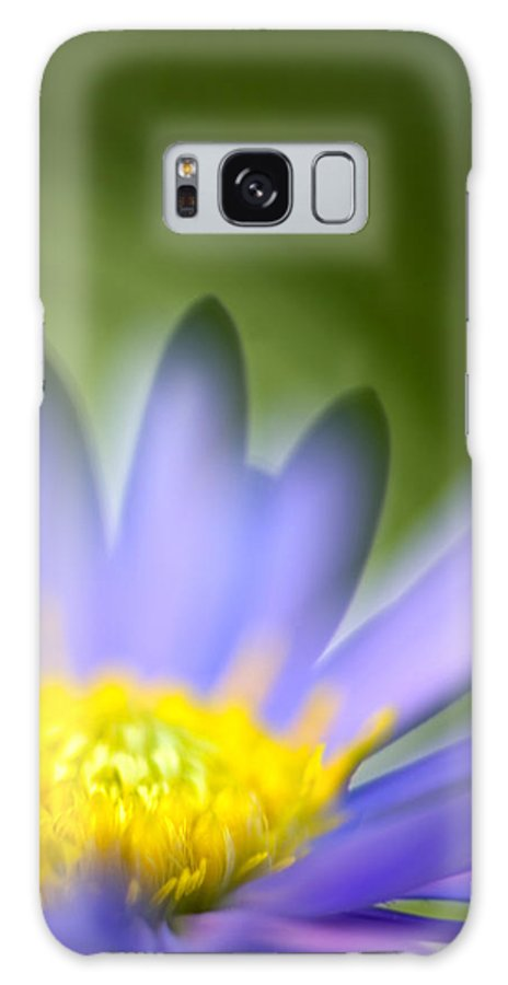 Flower Galaxy S8 Case featuring the photograph Fall Flower by Silke Magino