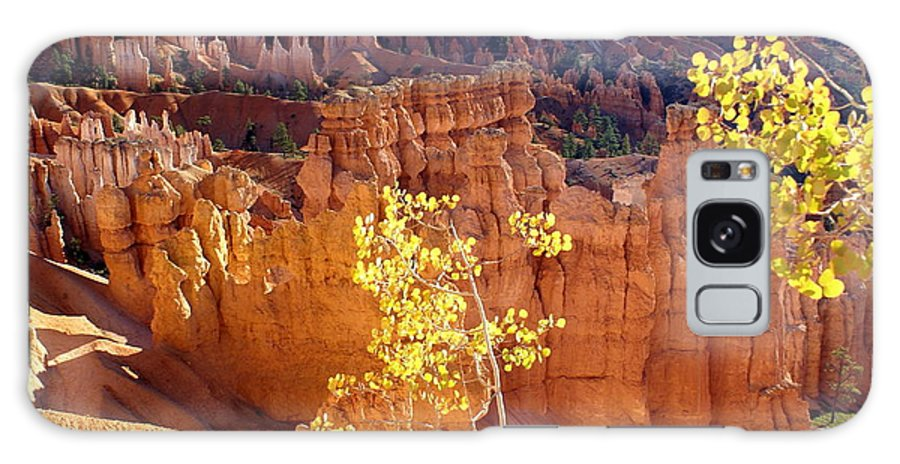 Bryce Canyon National Park Galaxy S8 Case featuring the photograph Fall In Bryce Canyon by Marty Koch