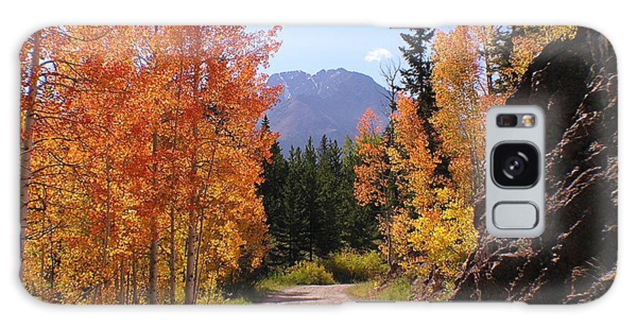 Trees Galaxy Case featuring the photograph Fall In Colorado by Carol Milisen