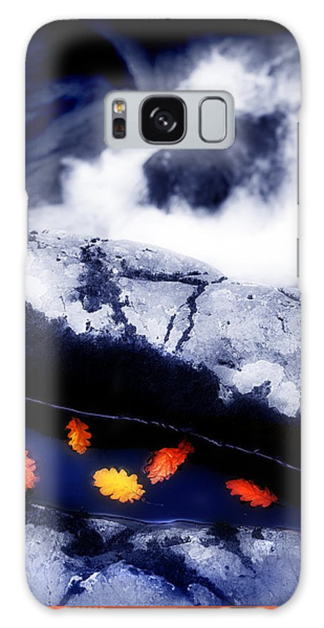 Water Galaxy S8 Case featuring the photograph Fall Quintet by Mal Bray
