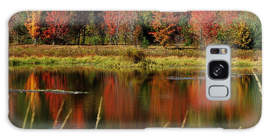 Autumn Galaxy S8 Case featuring the photograph Fall Splendor by Linda Murphy