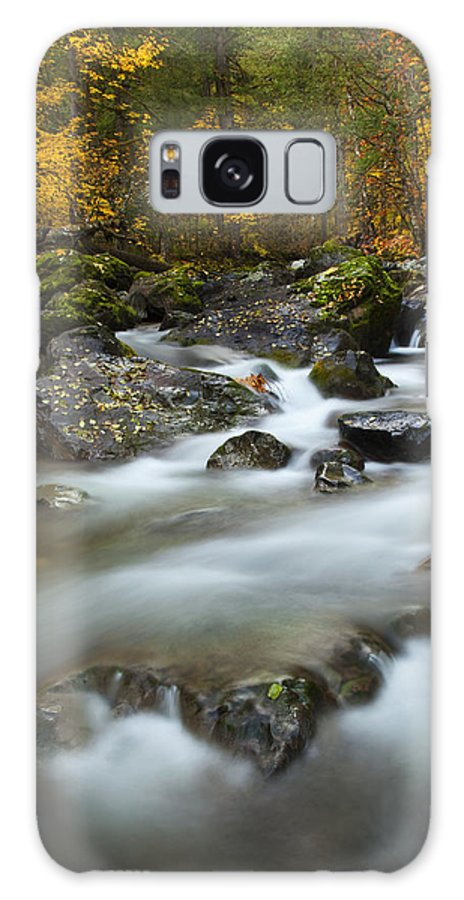 Stream Galaxy S8 Case featuring the photograph Fall Surge by Mike Dawson