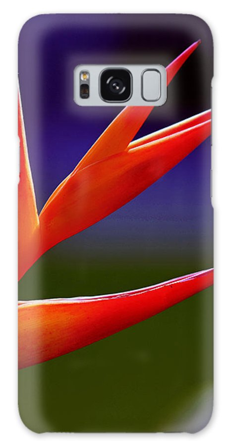 Flower Galaxy S8 Case featuring the photograph Fall Together by Melanie Moraga