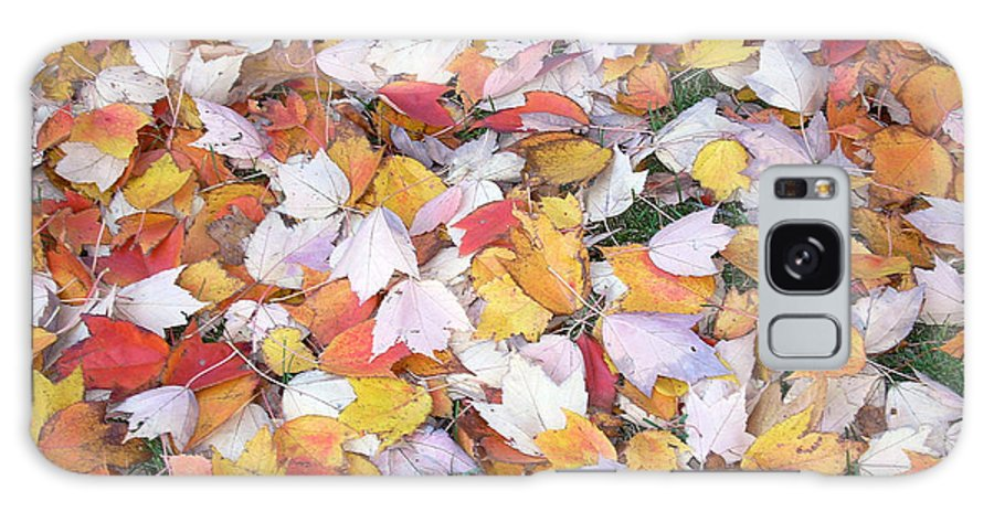 Photography Fall Autum Leaves Galaxy S8 Case featuring the photograph Fallen Fantasy by Karin Dawn Kelshall- Best