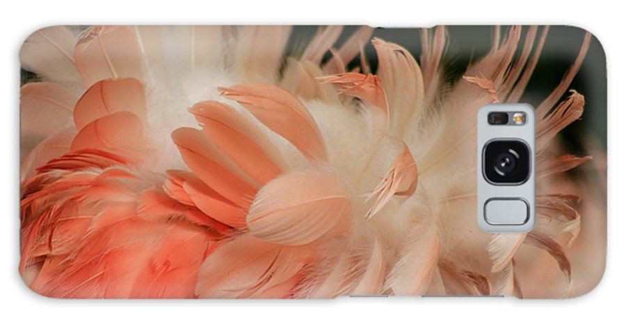 Flamingo Galaxy S8 Case featuring the photograph Featherz by Toma Caul