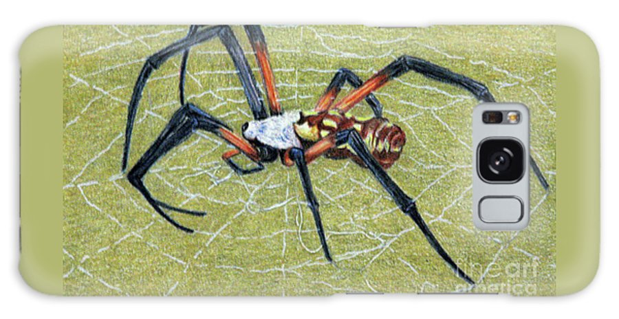 Fuqua - Artwork Galaxy S8 Case featuring the drawing Female Orb Spider -1 by Beverly Fuqua