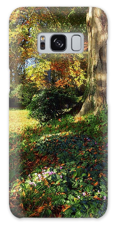 Autumn Leaves Galaxy S8 Case featuring the photograph Fernhill Gardens, Co Dublin, Ireland by The Irish Image Collection