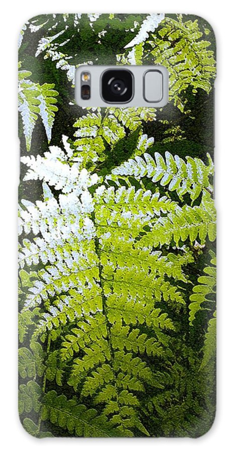 Ferns Galaxy S8 Case featuring the photograph Ferns by Nelson Strong