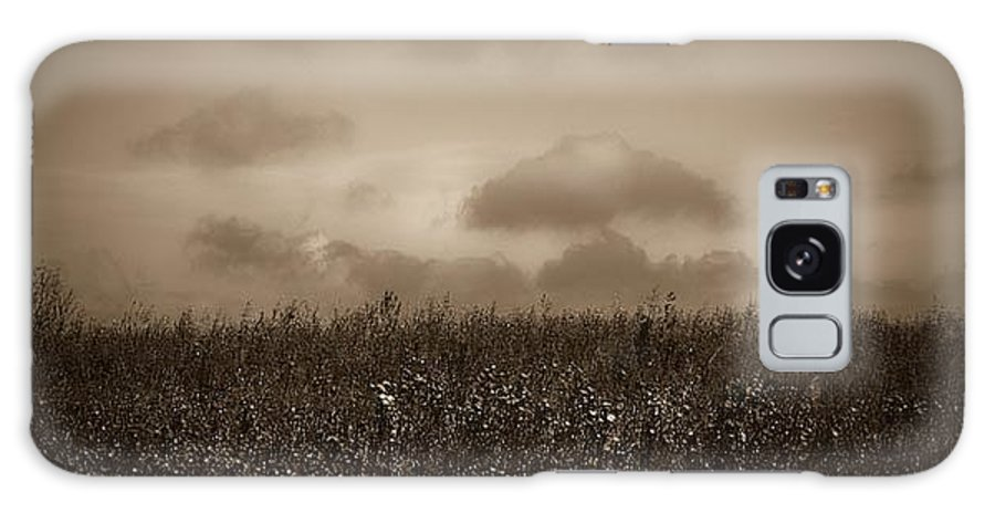Poland Galaxy S8 Case featuring the photograph Field In Sepia Northern Poland by Michael Ziegler