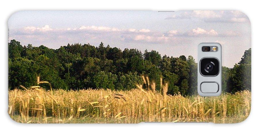 Field Galaxy S8 Case featuring the photograph Fields Of Grain by Rhonda Barrett