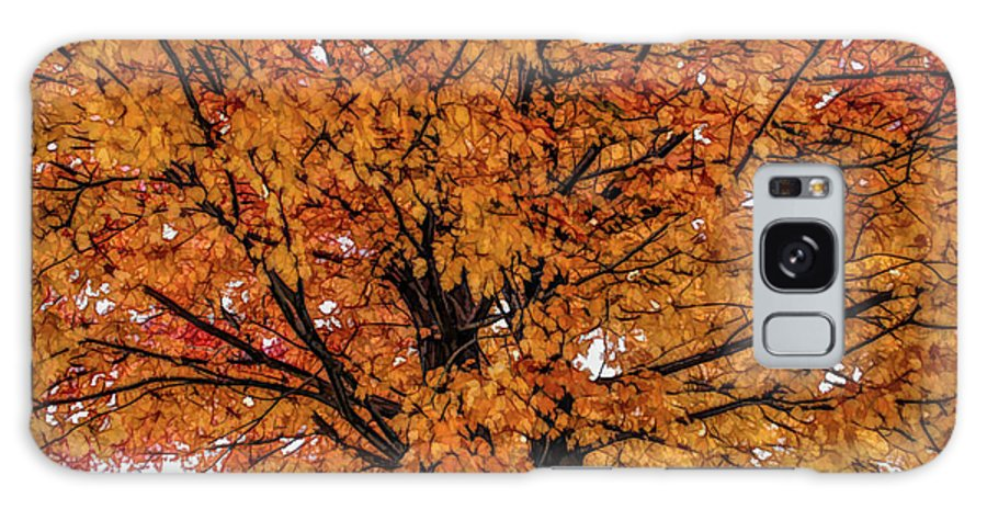 Autumn Galaxy S8 Case featuring the photograph Fine Wine Cafe Golden Tree by Aimee L Maher ALM GALLERY
