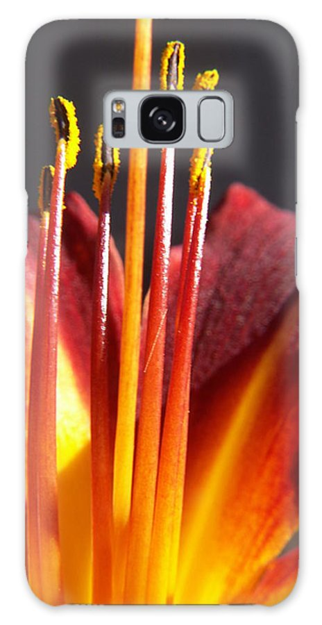 Fire Lily Galaxy Case featuring the photograph Fire Lily by Amy Fose