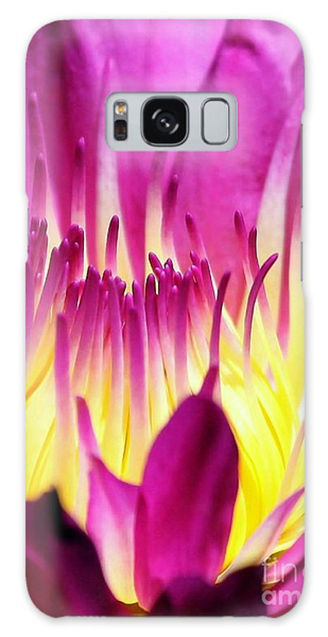 Magenta Galaxy S8 Case featuring the photograph Firey Magenta by Sabrina L Ryan