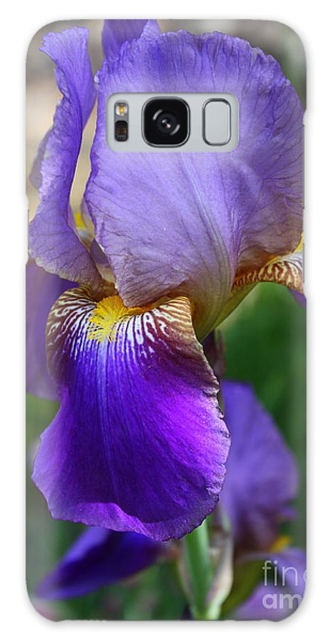 Iris Galaxy S8 Case featuring the photograph First Iris by Carol Groenen