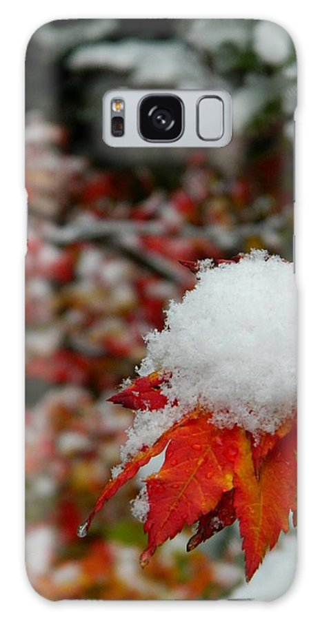 Galaxy S8 Case featuring the photograph First Snow by Shannon West