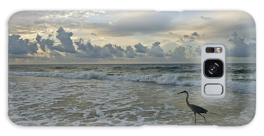 Blue Heron Galaxy S8 Case featuring the photograph Fishing In The Morning by Jennifer Kelly