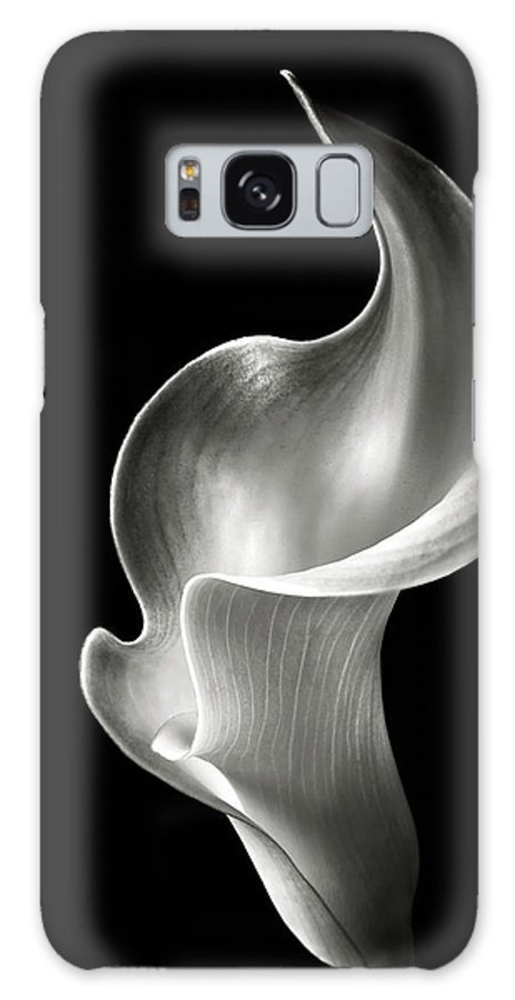 Flower Galaxy Case featuring the photograph Flame Calla Lily In Black And White by Endre Balogh