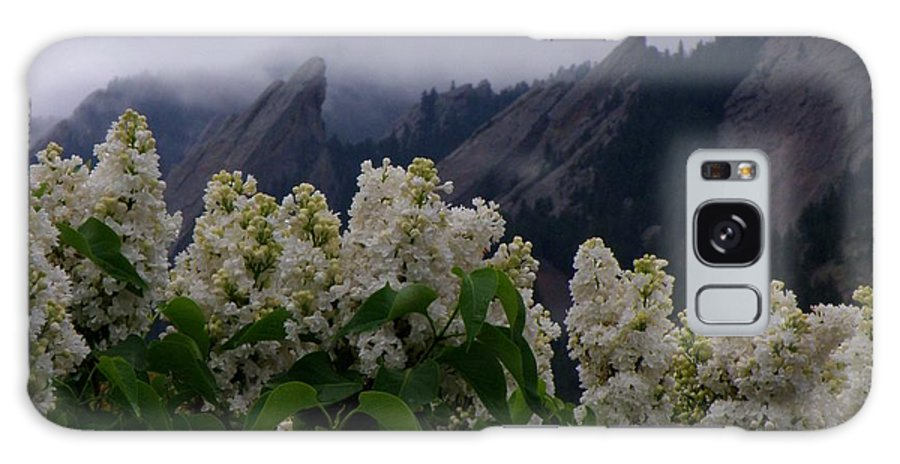 Flatirons Boulder Colorado Lilacs Flowers Spring Landscapes Misty Spring Galaxy S8 Case featuring the photograph Flatirons White Lilacs by George Tuffy