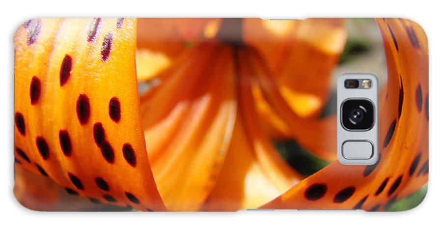 Lilies Galaxy S8 Case featuring the photograph Floral Abstracts Art Prints Summer Tiger Lily Baslee Troutman by Baslee Troutman