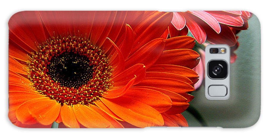 Clay Galaxy S8 Case featuring the photograph Floral Art by Clayton Bruster